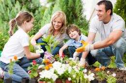 FreeGreatPicture.com-32426-portrait-of-a-family-gardening